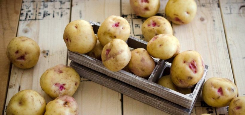 2013 Grand Prize Winning Recipe – Warba Potatoes Avial