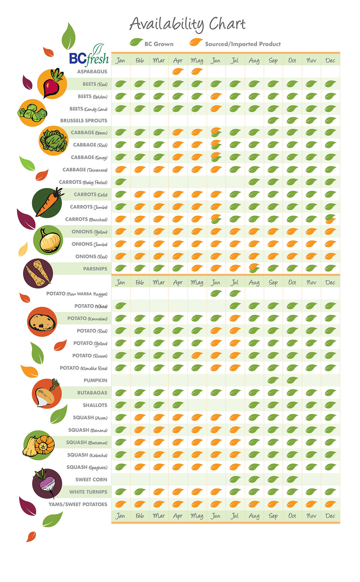 Availability Chart - BCfresh Vegetables