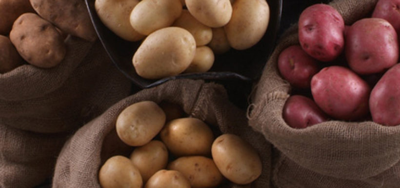 Potatoes - Local potatoes available from BC Fresh